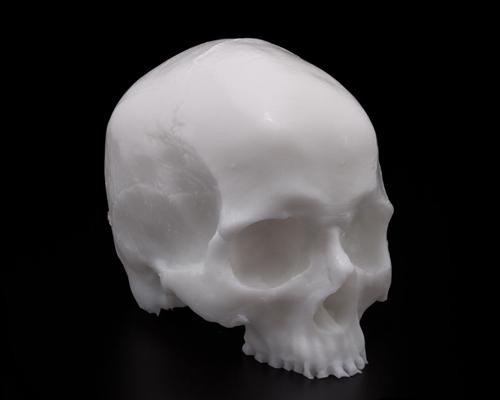 Practice Tattoo Skull